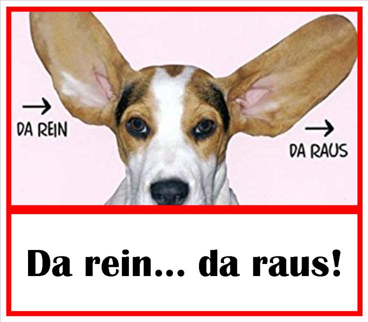 20180203_da_rein_da_raus